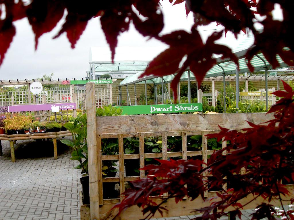 Garden Centre: Cavan Garden Centre, Co. Cavan, Ireland » Outdoors